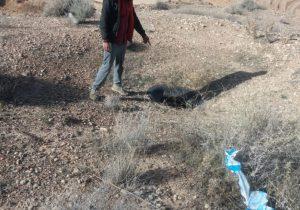 گفت و گو با یک خاورانی که پنج روز در چاه گرفتار شده بود/ آنقدر آب خوردم که همه ترسیدند!